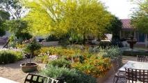 <h5>Cauleen's Casita Garden</h5>